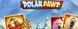 polar paws title picture