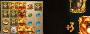 Druid's Dream Slot Review - Netent